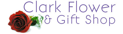 Clark Flower and Gift Shop, delivery fresh flowers to Clark South Dakota