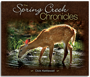 The Spring Creek Chronicles by Dick Kettlewell from Clark Flower and Gift Shop in Clark, SD