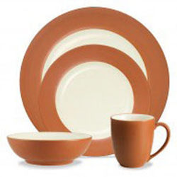 Noritake Colorwave TerraCotta 8092 04X Rim PlaceSetting Sale from Clark Flower and Gift Shop in Clark, SD