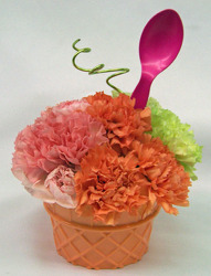 Rainbow Sherbet Cone from Clark Flower and Gift Shop in Clark, SD