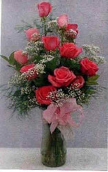 Dozen Pink Roses & Babies Breath from Clark Flower and Gift Shop in Clark, SD