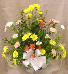Daisies, Alstromeria, & Carnations from Clark Flower and Gift Shop in Clark, SD