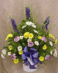 Larkspur, Daisies & Carnations from Clark Flower and Gift Shop in Clark, SD