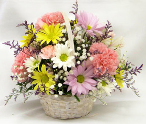 Basket of Cheer from Clark Flower and Gift Shop in Clark, SD