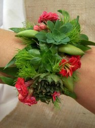 Wrist Corsage Cuff of Succulents from Clark Flower and Gift Shop in Clark, SD