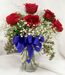 Half Dozen Red Roses & Babies Breath from Clark Flower and Gift Shop in Clark, SD